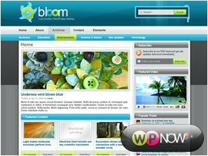 قالب Bloom